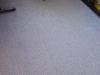 Čistenie, tepovanie kobercov v Trnave